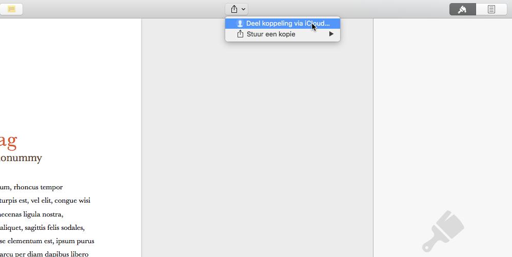 Pages documenten delen met mensen zonder mac pagina 3 van 3