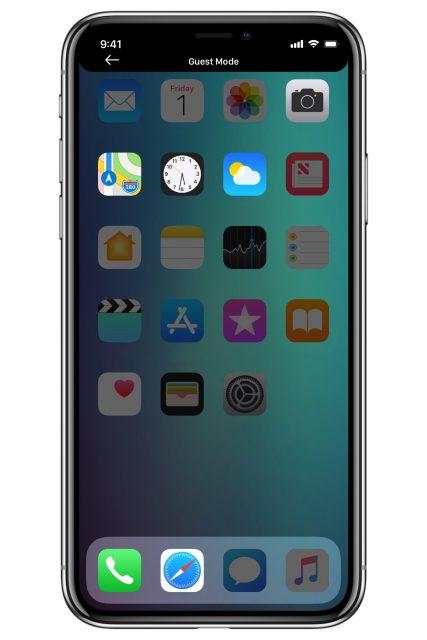 iOS 12 gastmodus