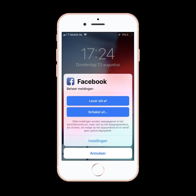 Stille meldingen iOS 12