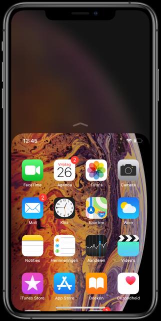 iPhone X Bereikbaarheid