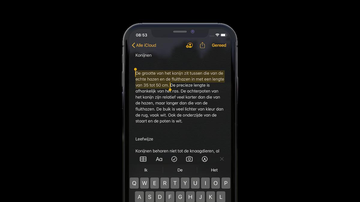 iOS 13 gebaren