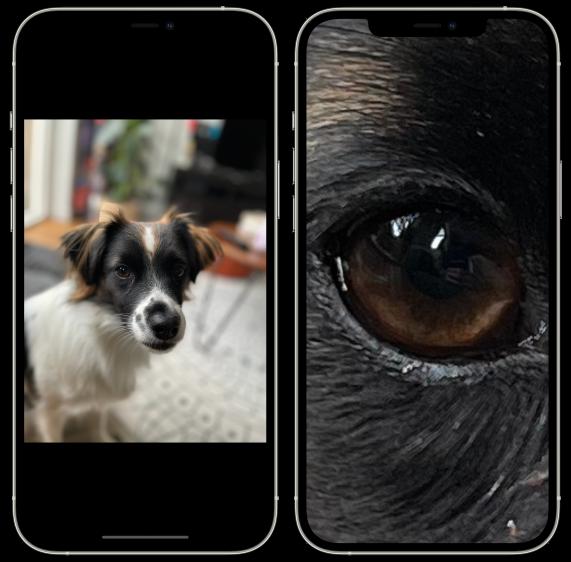 Foto's iOS 14 inzoomen